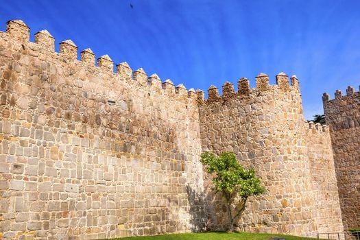 Avila Town Castle Walls Turret  Swallows Castile Spain