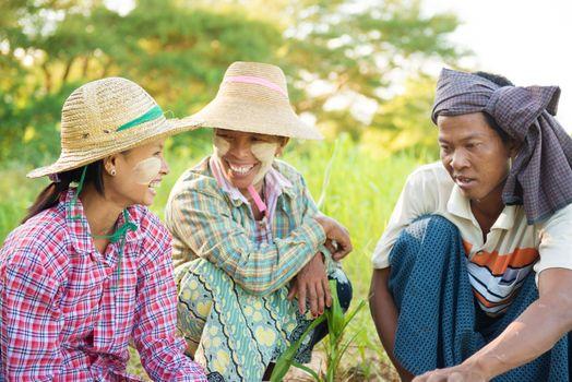 Traditional Myanmar farmers
