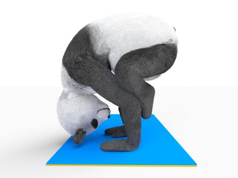 yogic asana posture on two hands upside down. legs located on elbows.