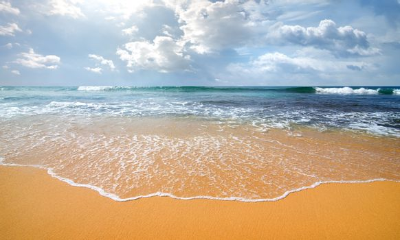 Waves and coast