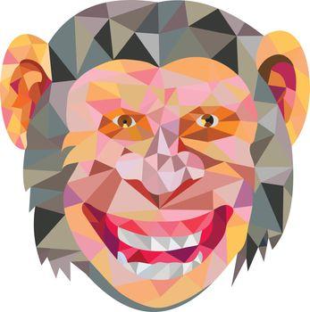 Chimpanzee Head Front Low Polygon