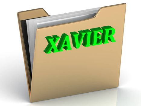 XAVIER- bright green letters on gold paperwork folder on a white background