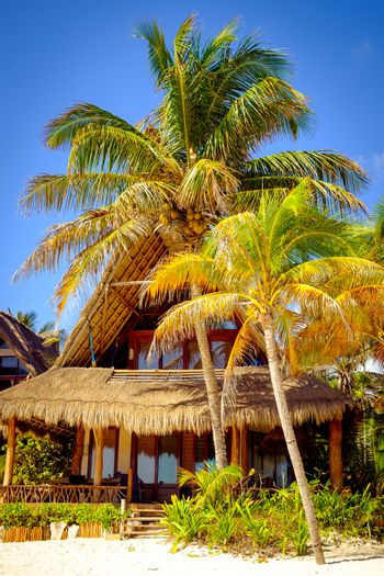 Tranquil scene of ocean coast hut and palm trees