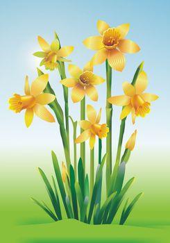 Jonquils Art Illustration. Yellow Jonquils Floral Theme.