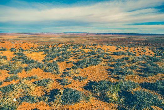 Raw Arizona Desert Landscape