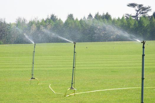 Irrigation taps spraying over lawn