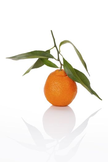One tangerine isolated on white background. Healthy tropical fruit eating.
