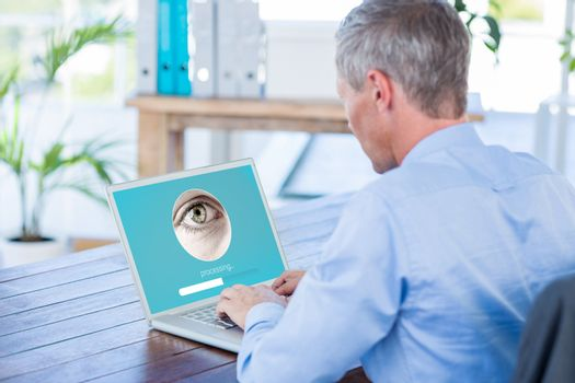 Composite image of iris recognition