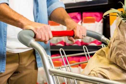 Man pushing trolley