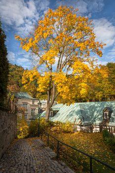 Carlsbad at autumn time, Czech Republic