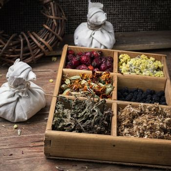 medicinal herb faith healer