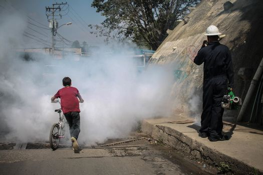 VENEZUELA, Caracas: A boy runs away through a cloud of smoke as a fumigation crew exterminates mosquitoes carrying the Zika virus in the slums of Caracas, Venezuela on February 3, 2016. As of February 4, there have been reports of at least 255 cases of the rare Guillain-Barre syndrome — which causes the immune system to attack the nerves — potentially linked to the Zika virus in Venezuela.