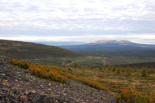 Mountain at tundra area