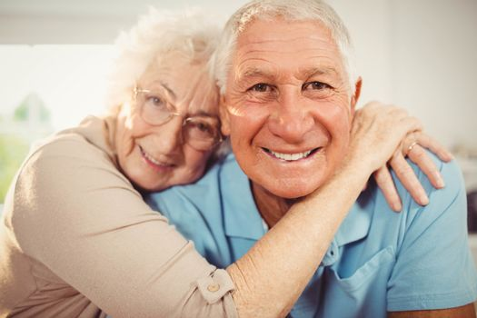 Portrait of smiling senior couple at home