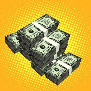 Money bundle of dollars