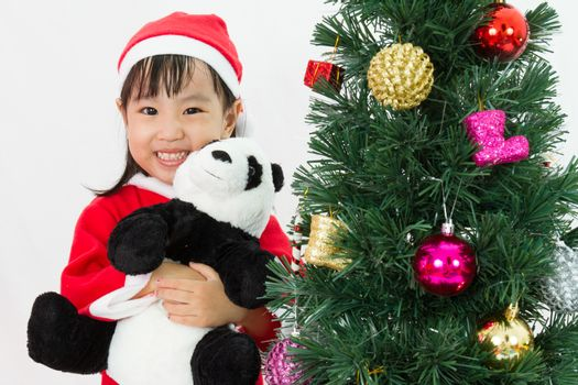 Asian Chinese little girl holding panda doll posing with Christmas Tree on plain white background studio.
