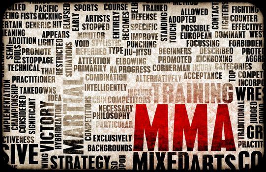 Mixed Martial Arts or MMA