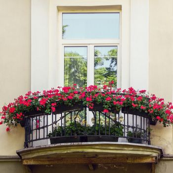 Classic style balcony with red flowers at summer