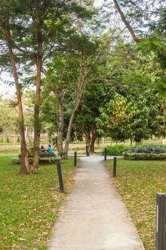Public Park Walking, Thammasat University, Thailand
