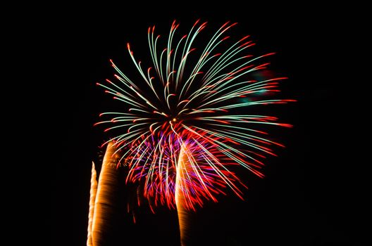 An image of exploding fireworks at night. Represents a celebration.