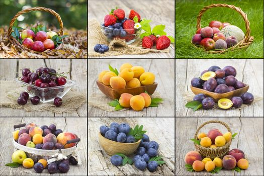 fresh fruits - collage