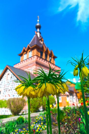 Spring blooming flowers against background of the brick Church