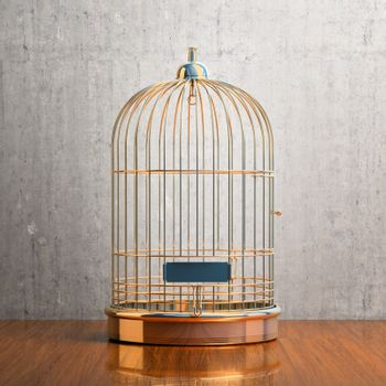 Empty gilded cage