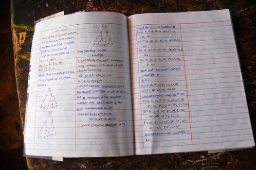 Pages of high school student exersize book