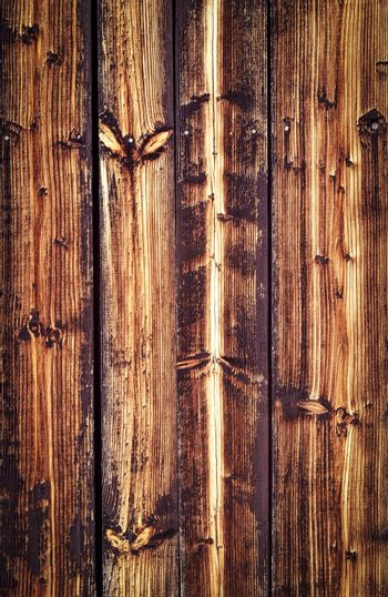 wall of the old spruce boards