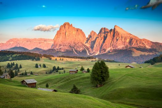 Seiser Alm with Langkofel Group in last sunlight, South Tyrol, I