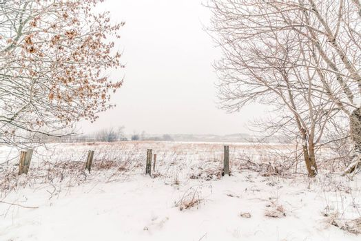 Countryside winter landscape with a fence in the snow