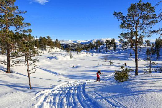 Skitur til Fuglelivatnet