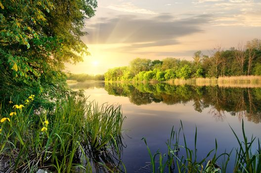 Vibrant sunset on river