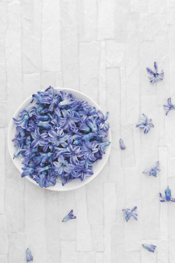 Fresh blue Hyacinth flowers in bowl on rustic wooden background. Overhead view with blank space