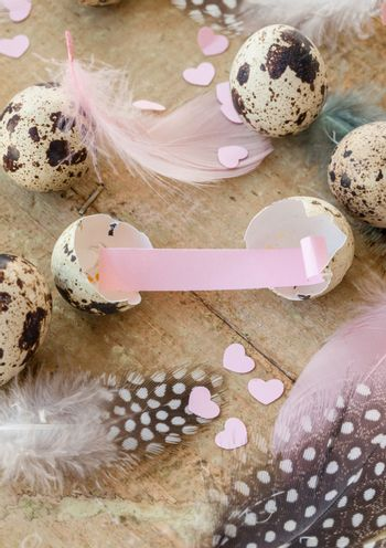 Quail eggs with colorful feathers