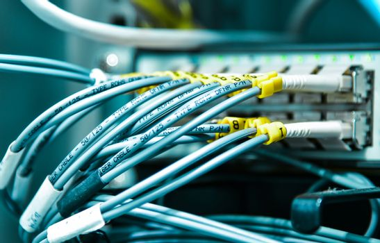 Network cable in data center