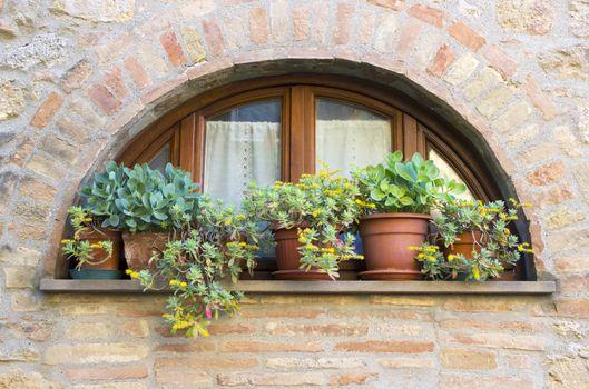 lovely tuscan window, Volterra, Italy