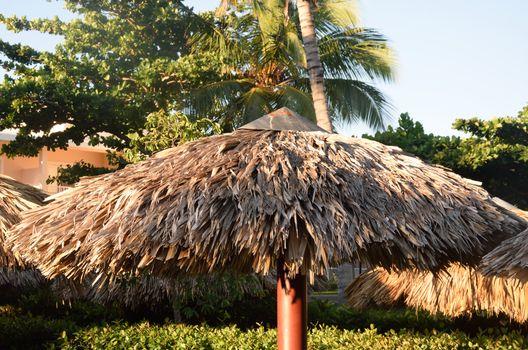 Large tropical Straw sunshade