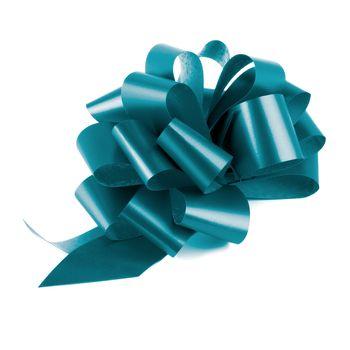 Blue Glossy Bow