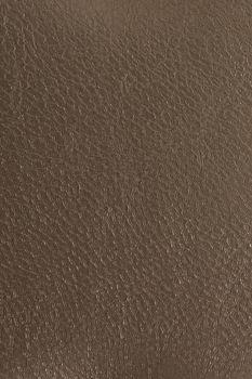 Bronze leather texture