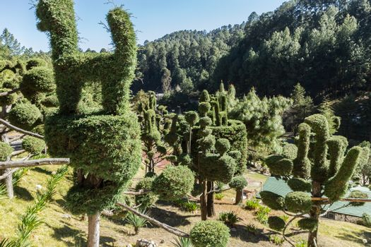 Bushes and trees cut in the shape of animals