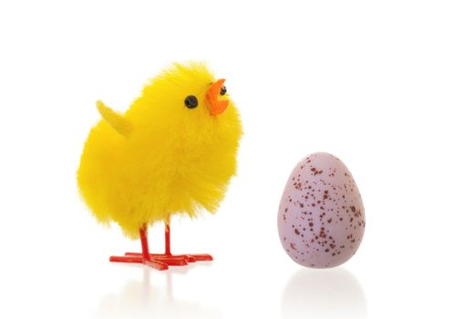 Single easter chick with a chocolate egg