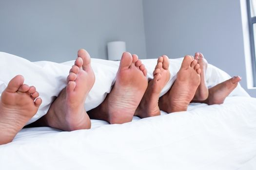 Feet of family sticking out from white quilt in bedroom