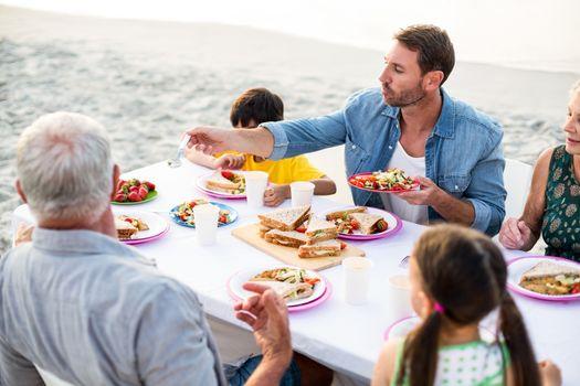 Happy family having a picnic at the beach