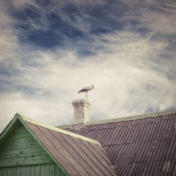 Stork standing on a chimney of old house with a tiled roof, dramatic blue sky background