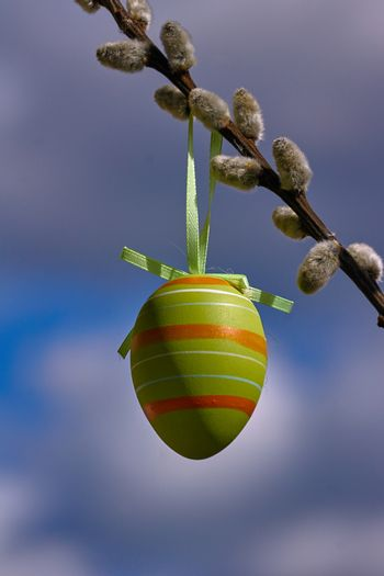 Easter egg hung on catkins against the sky