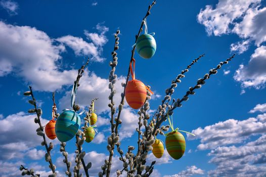 Easter eggs hung on catkins against the sky