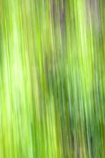 green  background fast line
