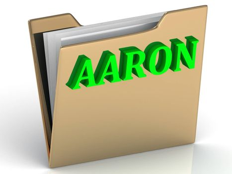AARON- bright green letters on gold paperwork folder on a white background