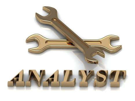 ANALYST- inscription of metal letters and 2 keys on white background